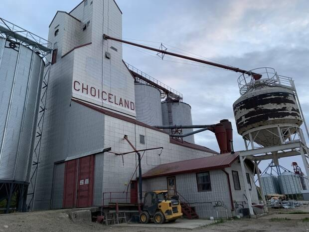 The town of Choiceland, located in northeast Saskatchewan, has a population of roughly 350 people.  (Guy Quenneville/CBC - image credit)