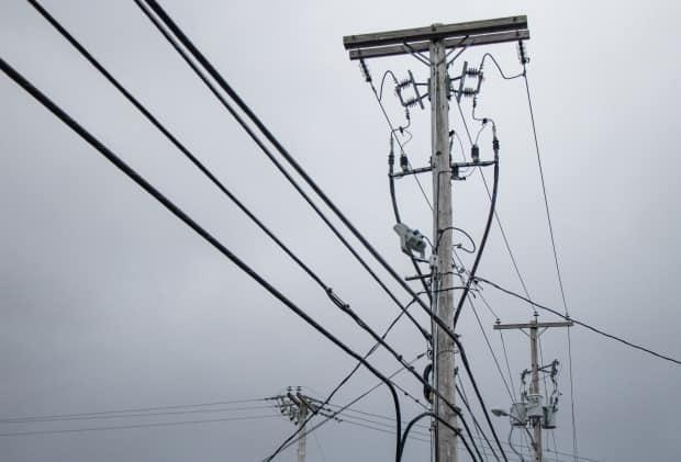 Nova Scotia reported more than 9,400 customers without power Saturday morning. (Robert Short/CBC - image credit)