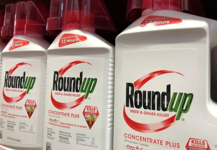 FILE PHOTO: Bayer unit Monsanto Co's Roundup shown for sale in California