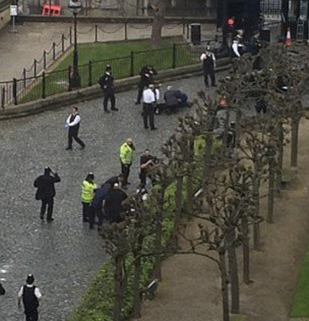 A man has been shot outside Houses of Parliament in London.