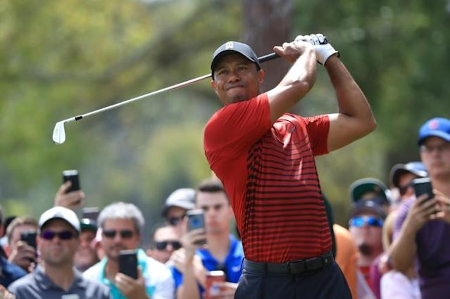 Tiger Woods plays his shot from the second tee during the final round of the Valspar Championship. (AFP)