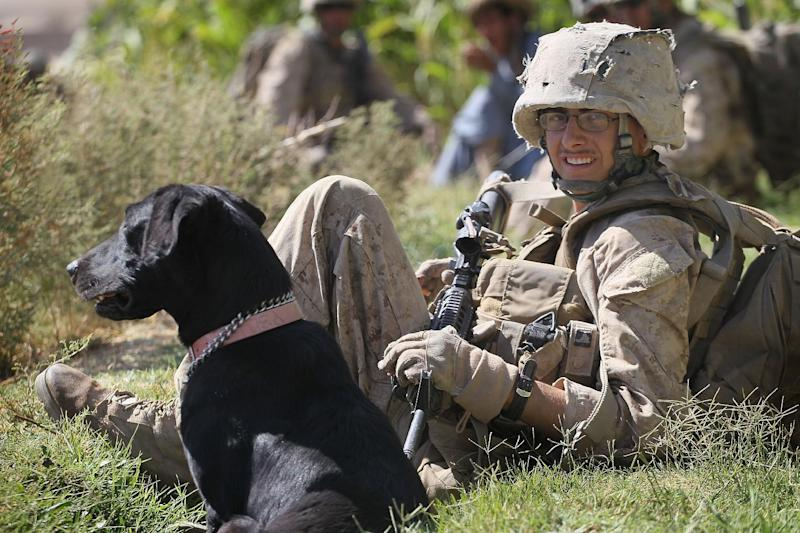 "In this undated image released by Animal Planet, Marine Cpl. Jonathan Eckert of Oak Lawn, Illinois, rests with his improvised explosive device sniffing dog, Bee, while on patrol in Afghanistan during the filming of ""Glory Hounds."" The series stars the military working dogs that serve beside their human partners in Iraq and Afghanistan. From tracking insurgents to sniffing out explosives, these heroic canines are an integral component of the armed forces _ and share deep emotional bonds with their human companions. (AP Photo/Animal Planet)"