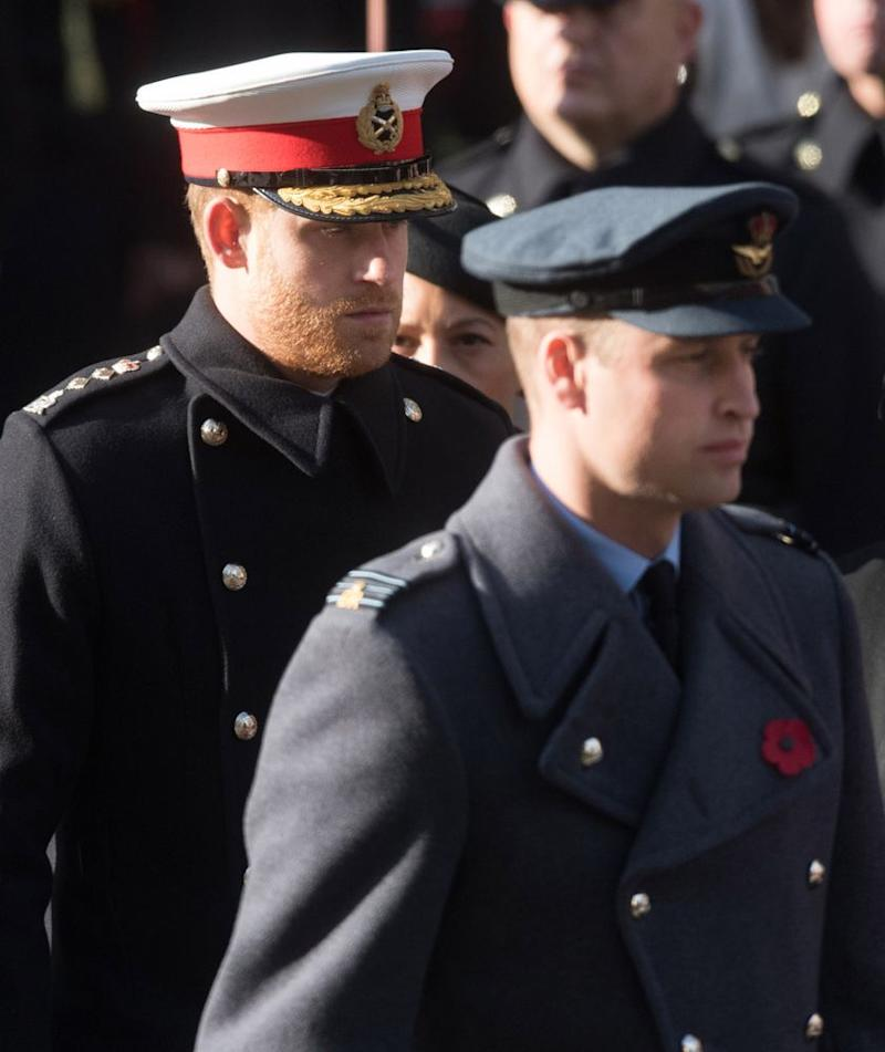 Prince Harry and Prince William | Samir Hussein/WireImage
