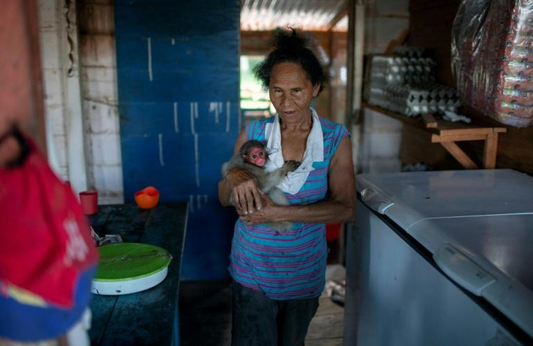 A woman carries a bald uakari monkey inside her home in the village of Sao Francisco do Cubua in Brazil's Amazon river basin