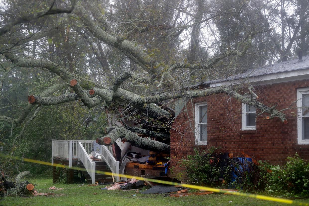 A fallen tree is shown after it crashed through the home where a woman and her baby were killed in Wilmington, North Carolina on Friday.