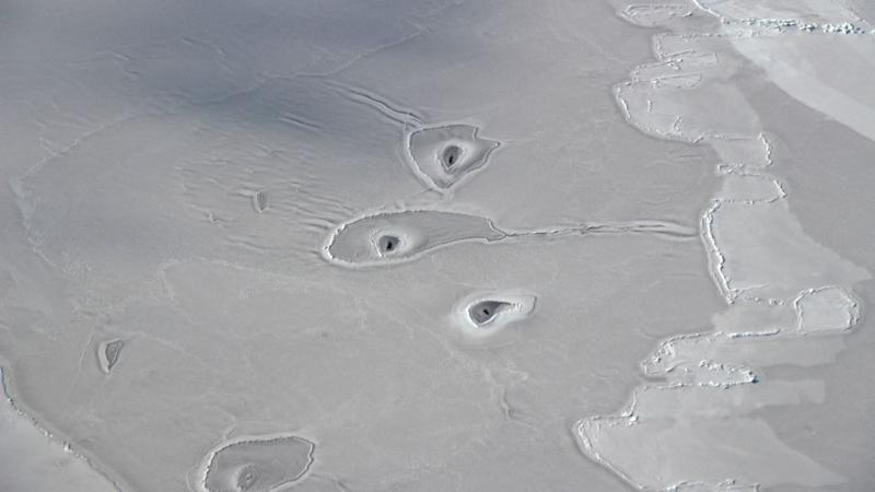 Image of circles in Arctic sea ice.