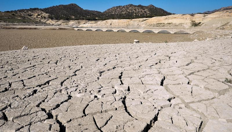 The cracked riverbed of the Amadorio reservoir is seen in Villajoyosa near Alicante where the water is far below usual levels due to drought, on June 25, 2015 (AFP Photo/Jose Jordan)