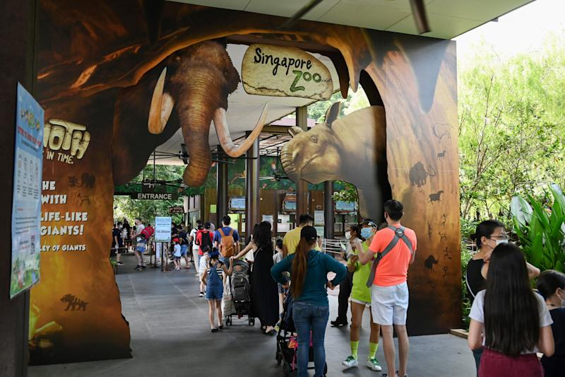 Visitors queue to enter the Singapore Zoo in Singapore on July 6, 2020, on its first day of reopening to the public after the attraction was temporarily closed due to concerns about the COVID-19 novel coronavirus. (Photo by Roslan RAHMAN / AFP) (Photo by ROSLAN RAHMAN/AFP via Getty Images)