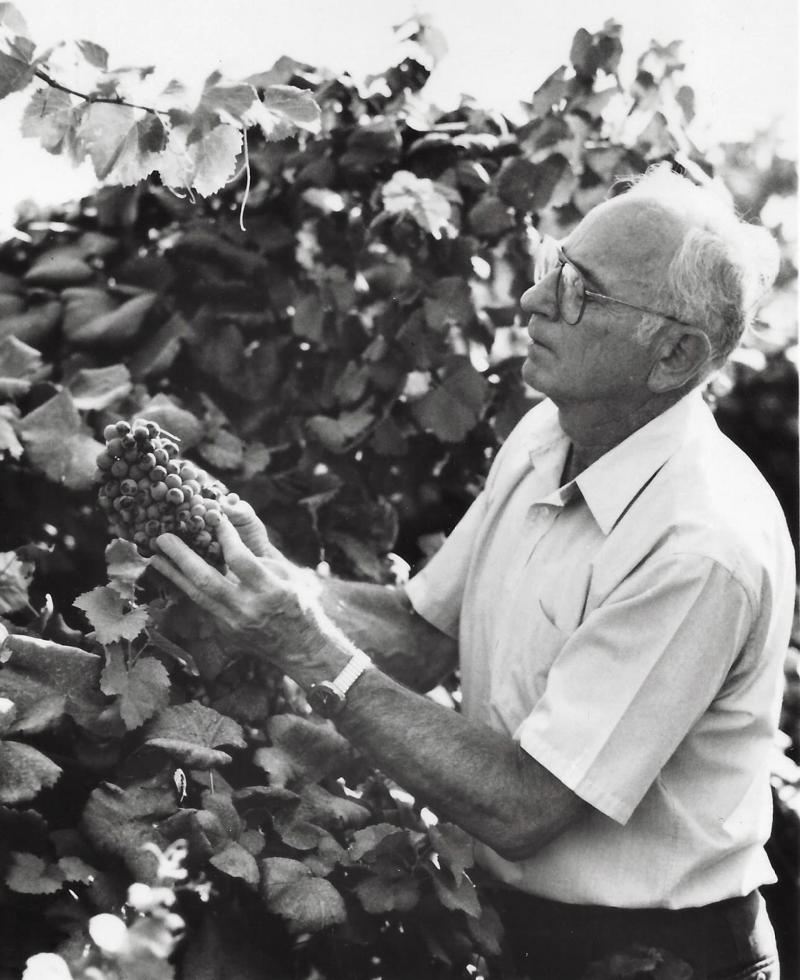 Pioneering grape grower in central California dies at 95
