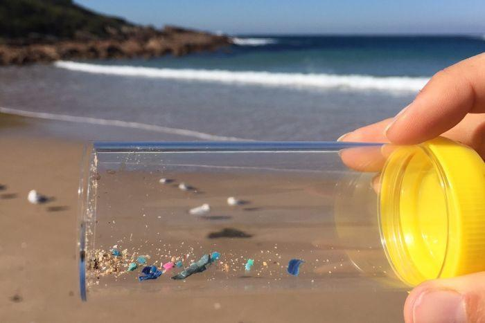 A close-up of a specimen jar with sand and specs of coloured plastic, with a calm blue ocean in the background