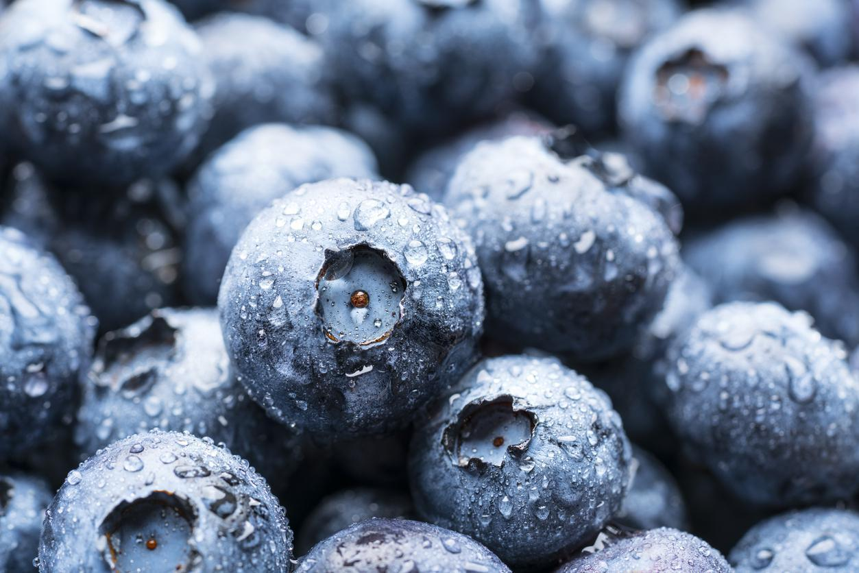 """<p>Blueberries, <a href=""""https://www.thedailymeal.com/healthy-eating/heart-healthy-foods-gallery/slide-9?referrer=yahoo&category=beauty_food&include_utm=1&utm_medium=referral&utm_source=yahoo&utm_campaign=feed"""">which are good for your heart</a>, can also help preserve your brain health. A <a href=""""https://www.tandfonline.com/doi/abs/10.1080/1028415X.2000.11747338?referrer=yahoo&category=beauty_food&include_utm=1&utm_medium=referral&utm_source=yahoo&utm_campaign=feed"""">study</a> published in the journal Nutritional Neuroscience showed that supplementing with blueberry extract reduced the severity of age-related declines in certain brain functions.</p>"""