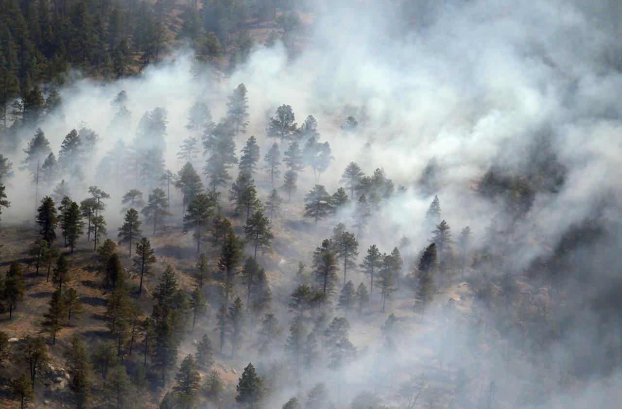 Smoke envelops trees on a ridge in the Lower North Fork Wildfire as it burns in the foothills community of Conifer, Colo., southwest of Denver on Tuesday, March 27, 2012. Firefighters are now able to actively battle the blaze on the ground that started on Monday and has already destroyed at least 16 homes in the rugged terrain. (AP Photo/David Zalubowski)