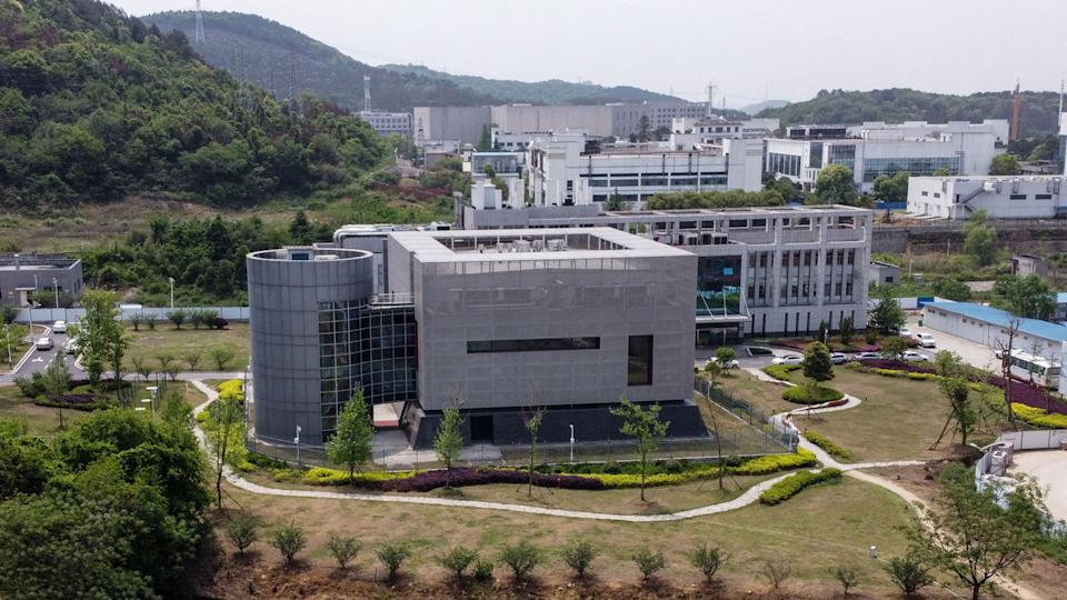 An aerial view of the P4 laboratory at the Wuhan Institute of Virology.