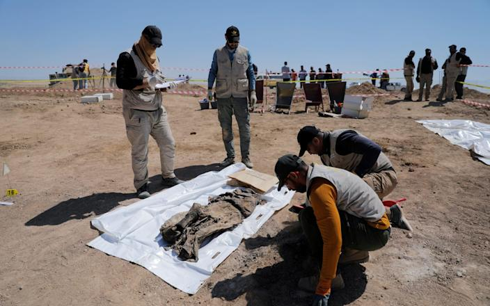 Ministry of Health staff collect remains from the mass grave - REUTERS/Abdullah Rashid