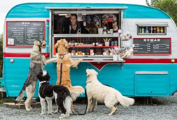 PHOTO: The company's treat trailer, nicknamed 'Hammy' sits permanently outside one of the largest dog parks in Seattle. (Rachelle Erickson Photography via The Seattle Barkery)
