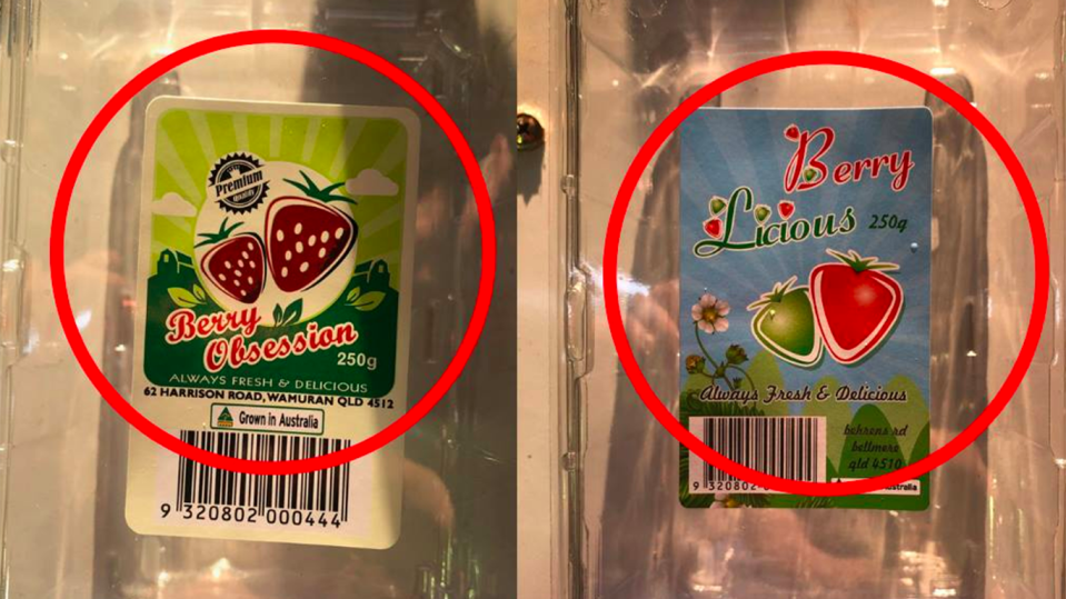 Consumers have been warned to dispose of or return Berry Licious and Berry Obsession punnets sold in Queensland, New South Wales and Victoria after sewing needles were found inside. Source: Facebook/Queensland Strawberries