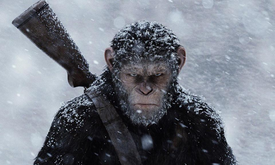 <p>Could the Apes series receive a reboot now the Fox trilogy has concluded with War? (Fox) </p>
