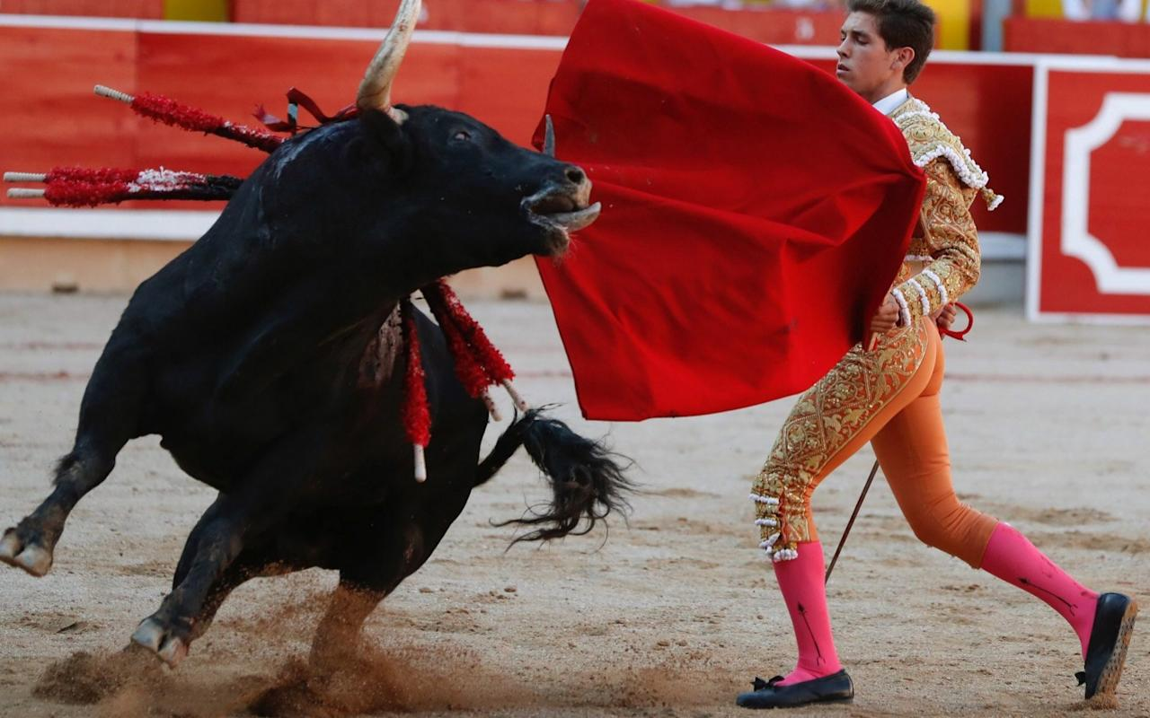 Eleven arrested on suspicion of sex attacks at Pamplona's famous bull festival