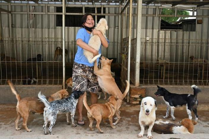 Somali and her team rescued dozens of puppies bound for a local Korean eatery this month (AFP Photo/ADEK BERRY)