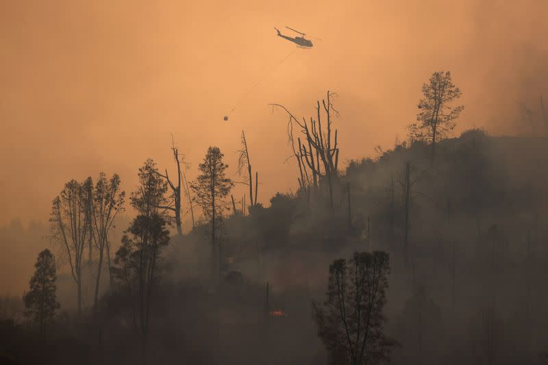 Firefighters make headway against lightning-sparked California wildfires