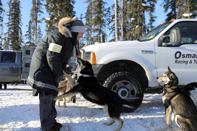 <p>A handler for Monica Zappa at the official restart of the Iditarod, a nearly 1,000 mile (1,610 km) sled dog race across the Alaskan wilderness, in Fairbanks, Alaska, U.S. March 6, 2017. REUTERS/Nathaniel Wilder </p>