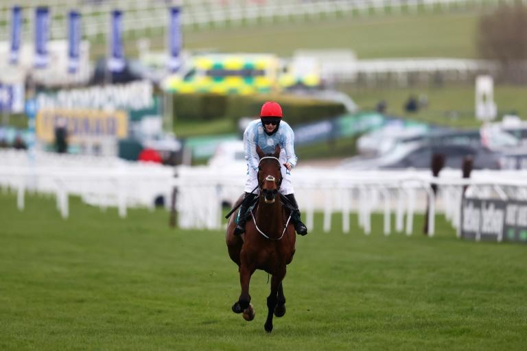 Rachael Blackmore is out on her own as a jumps jockey, say retired riding greats AP McCoy and Ruby Walsh