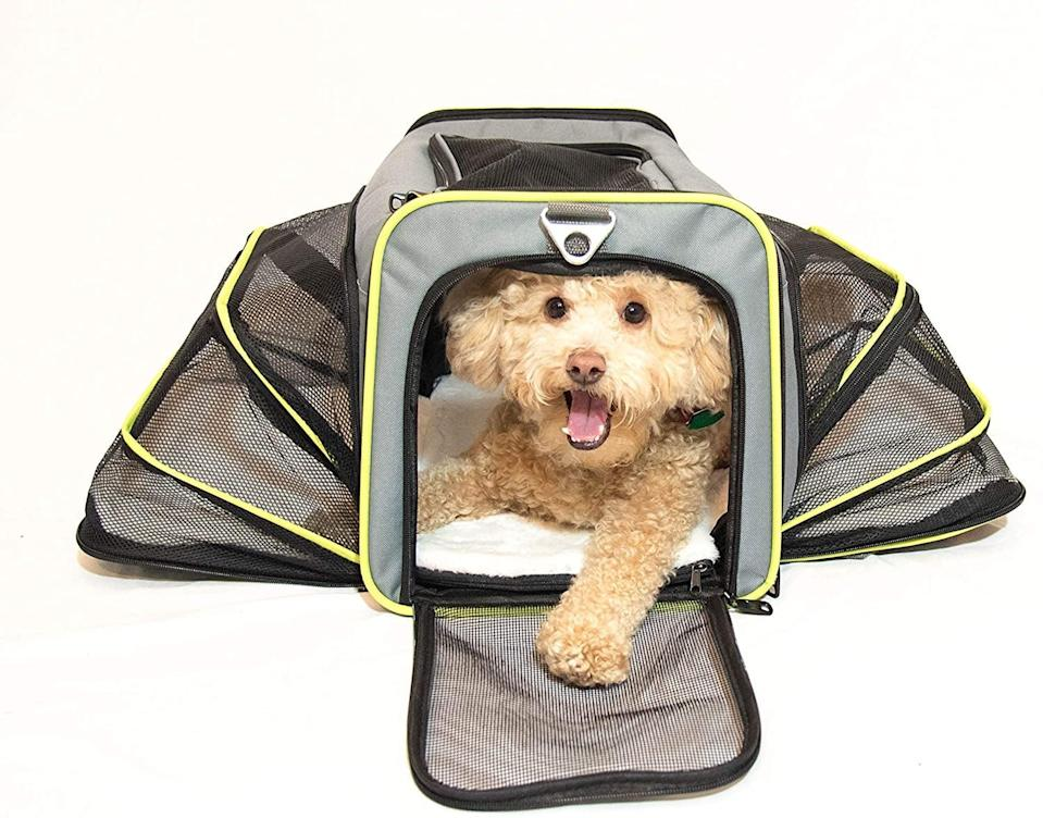 <p>Take your furry friend where ever you go with ease with the <span>PETS GO2 Premium Small Pet Carrier </span> ($40). It's approved by most airlines, has expandable walls, a sherpa soft bed, and comes with a dog bowl. </p>