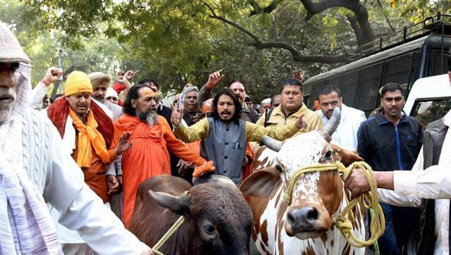 'Cow Vigilantes' Counter Beef Fests with Milk at Kerala House