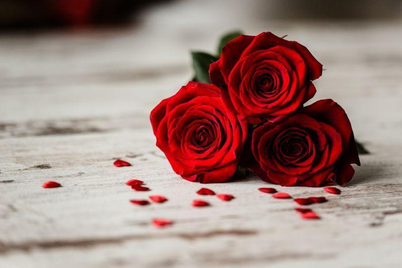 Why do we give roses? Photo: Getty