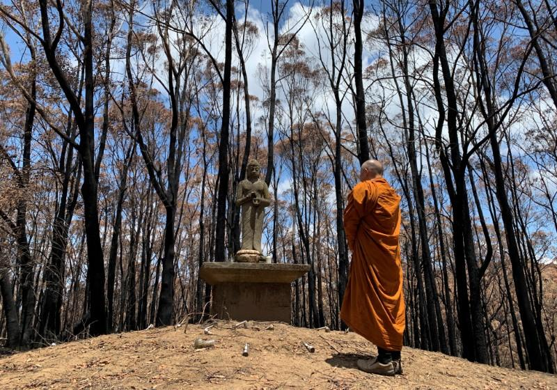 The Abbot of Sunnataram Forest Monastery, Phra Mana, 56, prays in front of a Buddhist statue near a burnt forest in Bundanoon, Australia