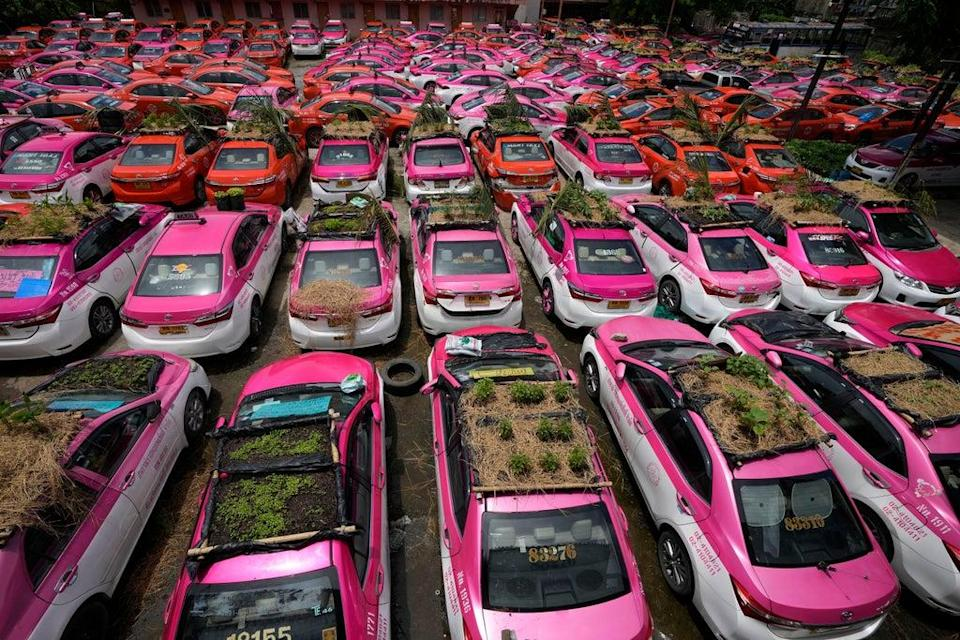 APTOPIX Thailand Taxi Gardens (Copyright 2021 The Associated Press. All rights reserved.)