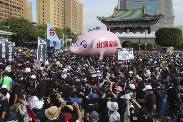 """People hold a pig model """"Betray pig farmers"""" written on it during a protest in Taipei, Taiwan, Sunday, Nov. 22. 2020. Thousands of people marched in streets on Sunday demanding the reversal of a decision to allow U.S. pork imports into Taiwan, alleging food safety issues. (AP Photo/Chiang Ying-ying)"""