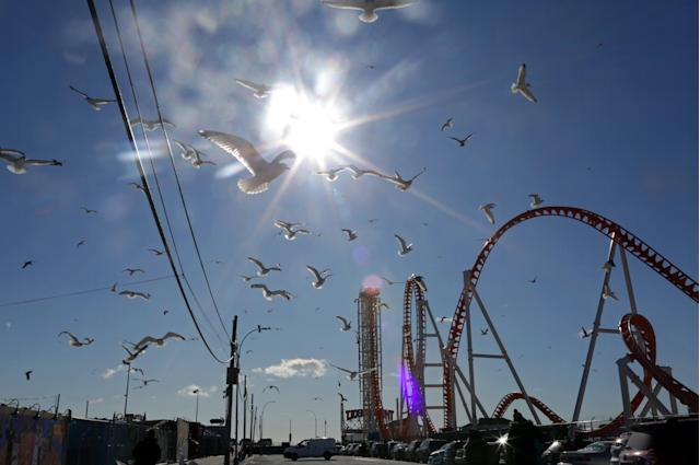 <p>Seagulls fly at Coney Island before Polar Bear Club swimmers make their annual icy plunge into it on New Year's Day, January 1, 2018, (Photo: Yana Paskova/Getty Images) </p>