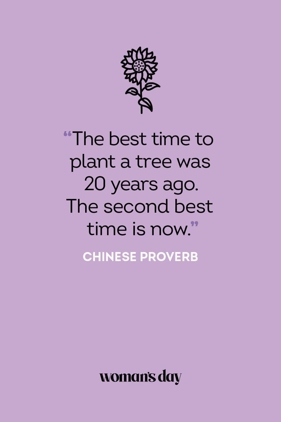 <p>The best time to plant a tree was 20 years ago. The second best time is now.</p>