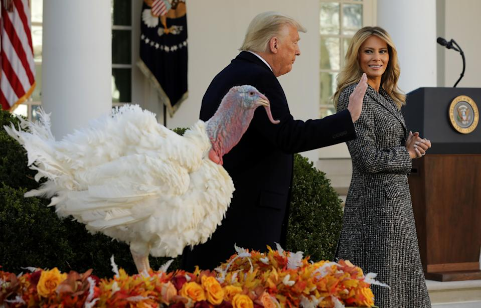 President Trump and first lady Melania Trump leave the Rose Garden after pardoning the national Thanksgiving turkey on Tuesday. (Photo by Chip Somodevilla/Getty Images)