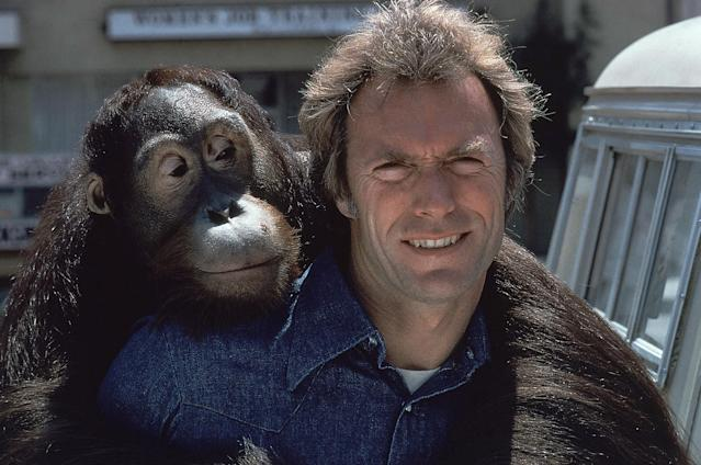 "In this 1978 file photo, Clint Eastwood and an orangutan named Clyde are shown on the set of the film ""Every Which Way But Loose"". (AP Photo)"