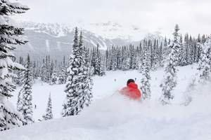 Let It Snow! Record Breaking Snowfall in Whistler Doesn't Show Signs of Stopping