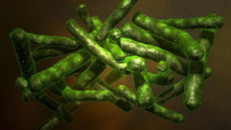 What You Need to Know About Extensively Drug-Resistant Tuberculosis