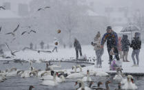 A man feeds the birds at the Round pond in Kensington Gardens as snow falls in London, Sunday, Jan. 24, 2021. (AP Photo/Alastair Grant)