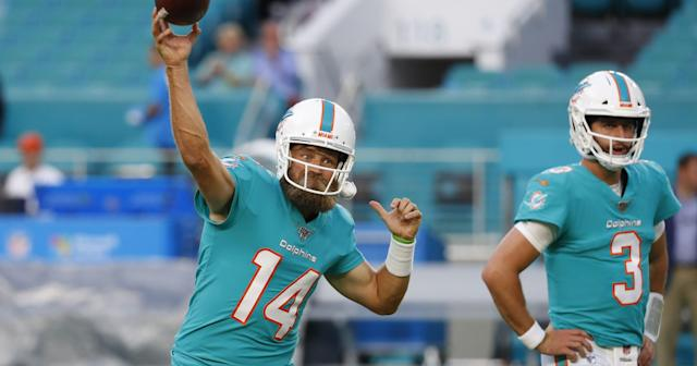 Dolphins Preview Capsule