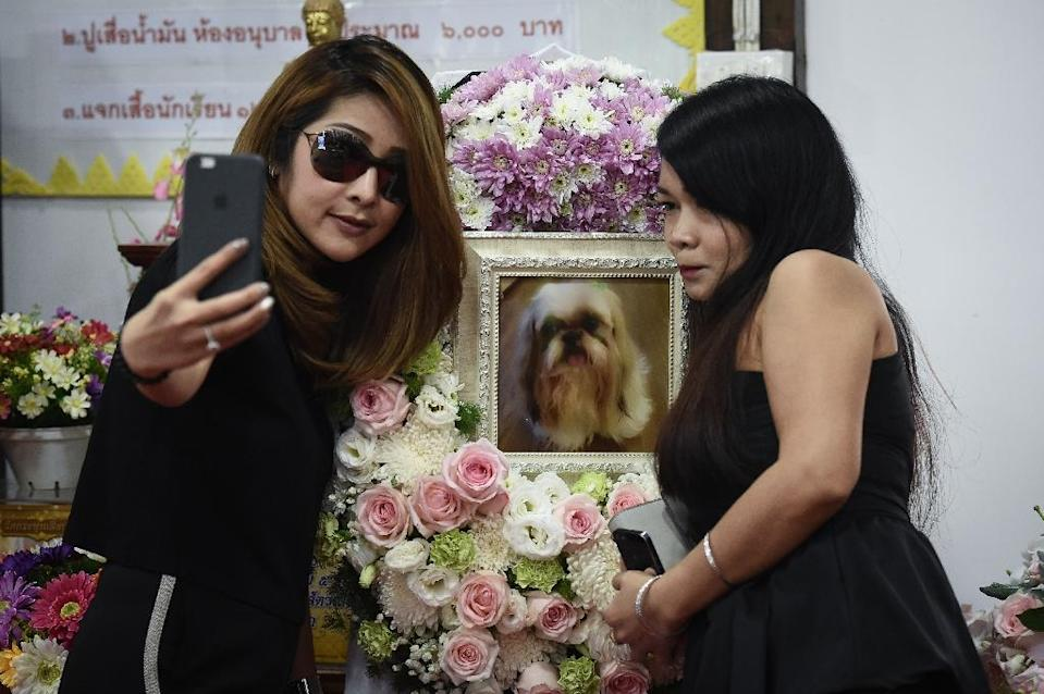 Pet cremations, complete with Buddhist rituals, are popping up across Bangkok for dogs, cats and even monkeys (AFP Photo/LILLIAN SUWANRUMPHA)
