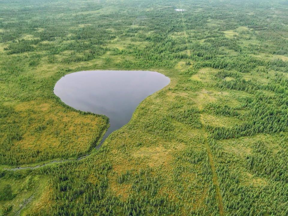 Aerial view of wetlands surrounding a small lake