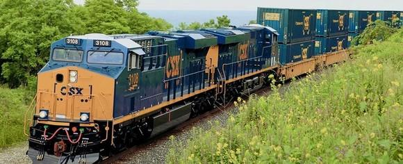 CSX locomotive and cars rounding mountain bend with wildflowers in foreground.
