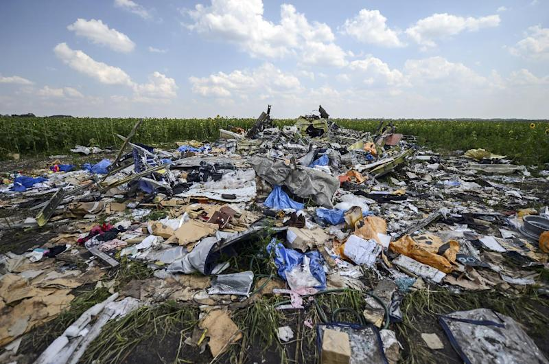 A photo taken on July 23, 2014 shows the crash site of the downed Malaysia Airlines flight MH17, in the Donetsk region of east Ukraine (AFP Photo/Bulent Kilic)