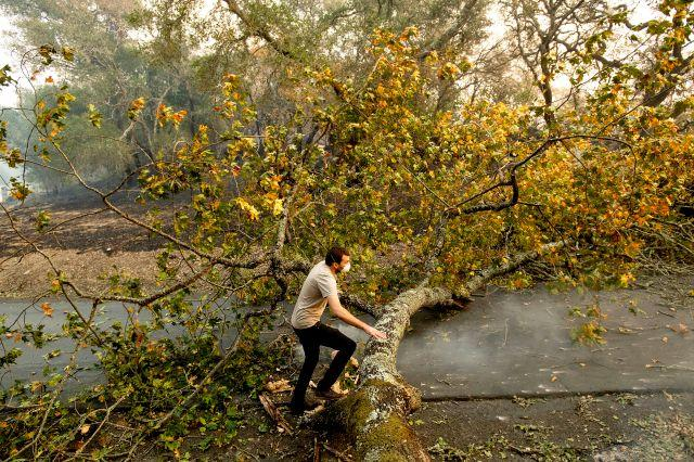 Brennan Fleming jumps a fallen tree while helping his girlfriend evacuate horses stranded by a wildfire called the Kincade Fire in Healdsburg on Oct. 27.