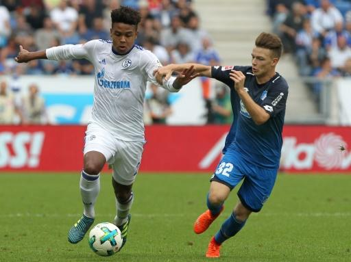 Hoffenheim's midfielder Dennis Geiger and Schalke's midfielder Weston McKennie (L) vie for the ball during the German first division Bundesliga football match September 23, 2017