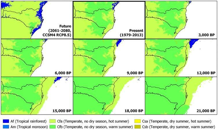 Nine different maps of southern Brazil showing ecological changes over time.
