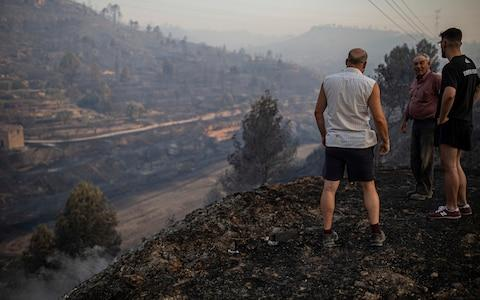 Local villagers overlook a burned landscape after the wildfire in Torre de l'Espanyol - Credit:  Jordi Borras/AP