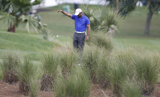 Tiger Woods does a drop after hitting into the water on the fifth hole during the second round of the Honda Classic golf tournament in Palm Beach Gardens, Fla., Friday, March 2, 2012. (AP Photo/Lynne Sladky)