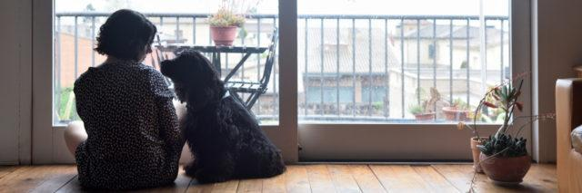 a woman is sitting on the floor with her dog looking sad